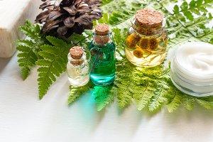 natural cosmetics on a fern leaf