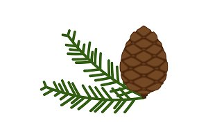 Pinecone icon. A branch of pine from