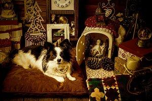 Baby Jesus and dog vintage Christmas