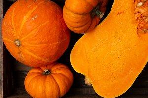 Close-up autumn harvest background