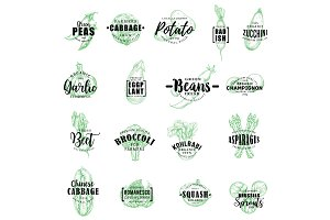 Farm vegetables vector lettering