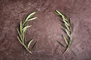 Olive branches on brown background
