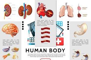 Cartoon human body infographic set