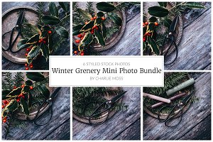 Winter Greenery Mini Photo Bundle
