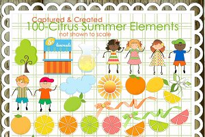 100 Citrus Summer Elements/Clipart