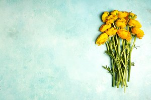 Yellow ranunculus flowers