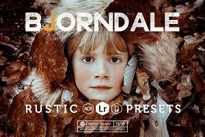 Bjorndale Presets - Desktop & Mobile