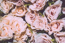 Retro rose flower background by  in Beauty & Fashion