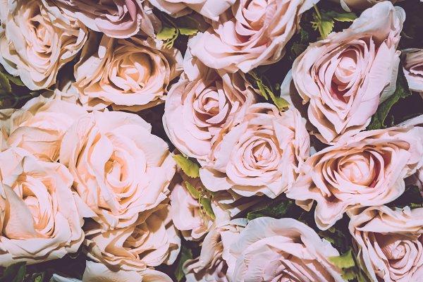 Beauty & Fashion Stock Photos: Pushish Images - Retro rose flower background