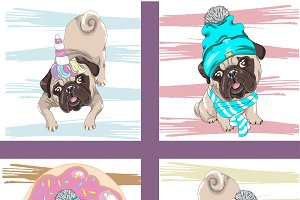Set of 4 cute pugs, funny dog.