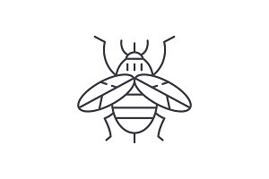 Bee line icon concept. Bee vector