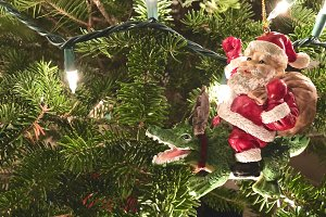 Gator Santa Ornament