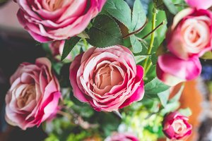 Bouquet rose flower background