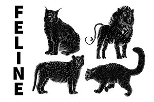 Lion, tiger, leopard and lynx