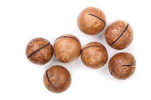 unshelled macadamia nuts isolated on