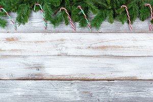 Christmas evergreen and candy canes