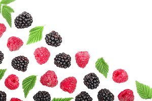 blackberry and raspberry with leaves
