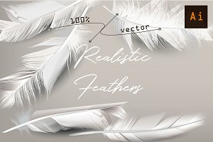 White feather. Vector realistic clip