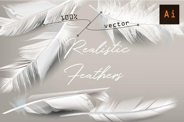 White feather. Vector realistic cli…