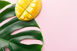 Monstera green leaves with mango on