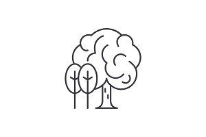 Grove line icon concept. Grove