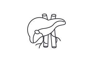 Human liver line icon concept. Human