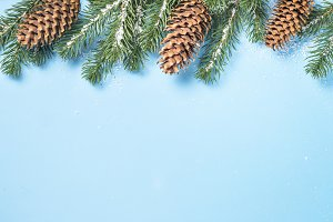 Snow Fir tree branch and cones on