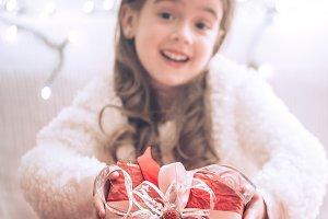 Christmas and Holiday concept