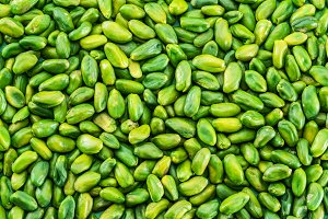 Lot of green pistachio nuts. Food ba