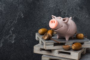 Funny figure of a pig with acorns