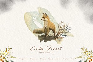 Cold forest- Winter Graphic Set