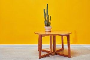 Cactus in flowerpot on little table
