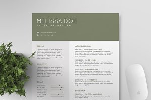 Resume/CV Template IV