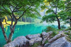 Switzerland landscape at the summer