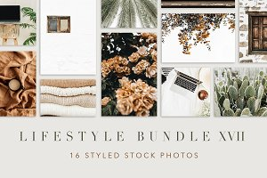 Lifestyle Bundle 17