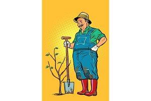 old gardener plants a seedling