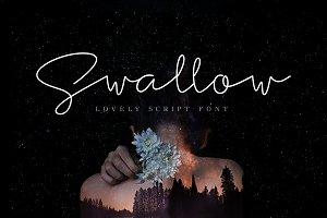 Swallow Script Font