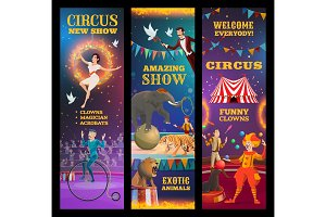 Magician, clown, acrobat in circus
