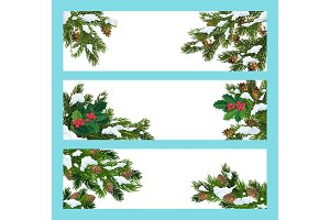 Pine and holly tree branches