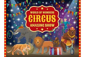 Trained animals and acrobat, circus