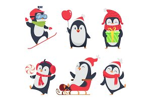 Penguin characters. Cartoon winter