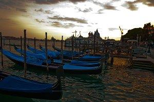 Venice 534.jpg