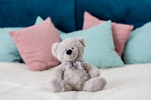 teddy bear sitting on the bed with p