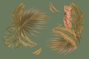 Tropical leaves floral illustrations