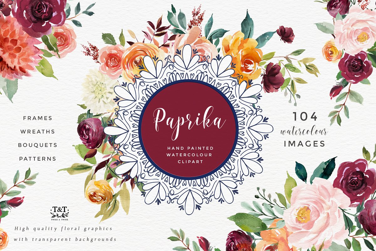 Watercolor Flower Clipart Paprika Illustrations Creative Market