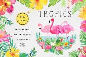 Tropics Watercolour Clipart Set