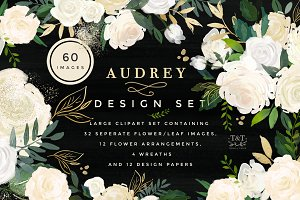 Watercolor Floral Design Set -Audrey
