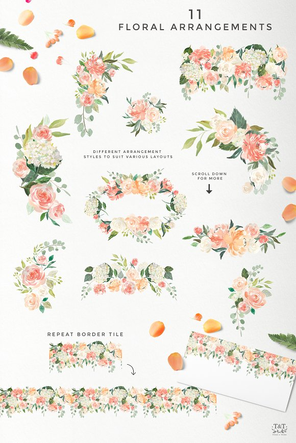 peaches cream flower graphic set illustrations creative market