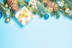 Snow Fir tree branch with blue and
