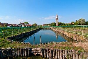 Venice  Burano 011.jpg